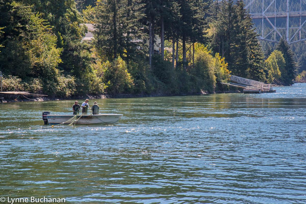 Pulling in the Nets, Cascade Locks