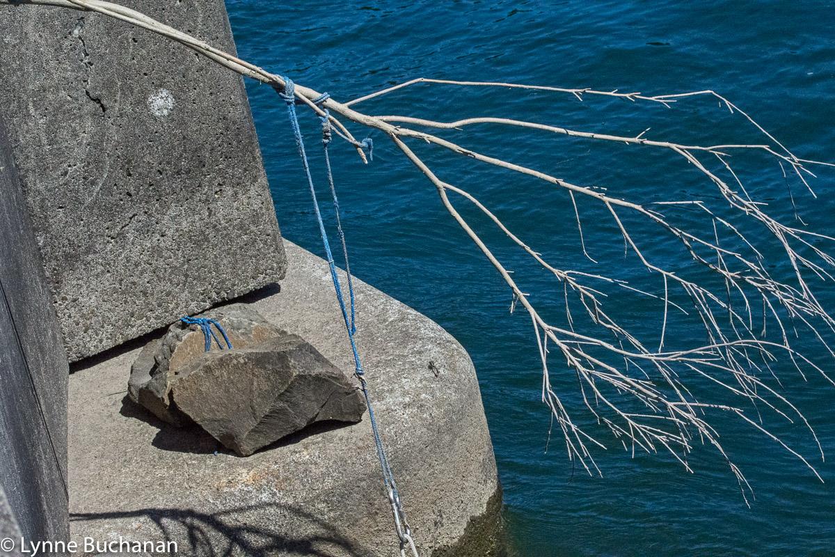 Indigenous Fishing Pole
