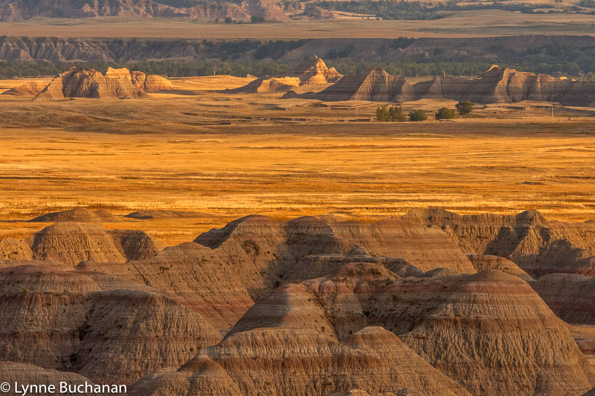 Badlands in the Distance