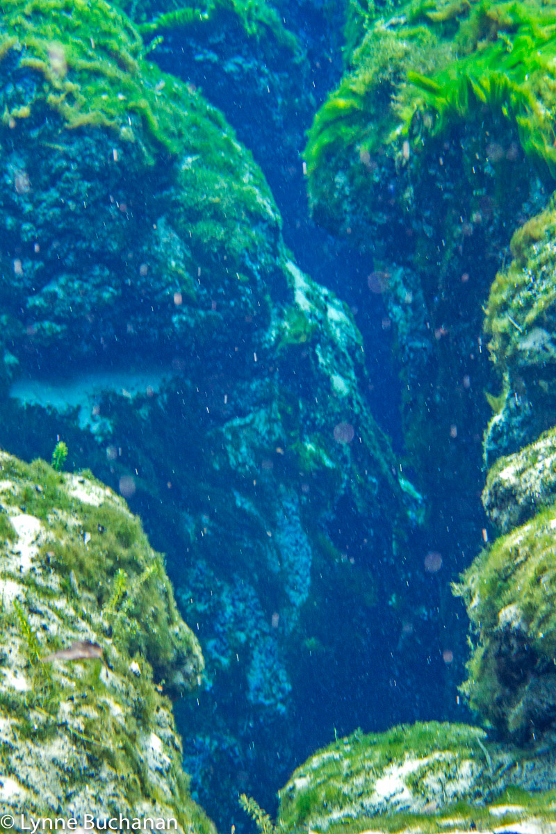 Underwater Cliffs