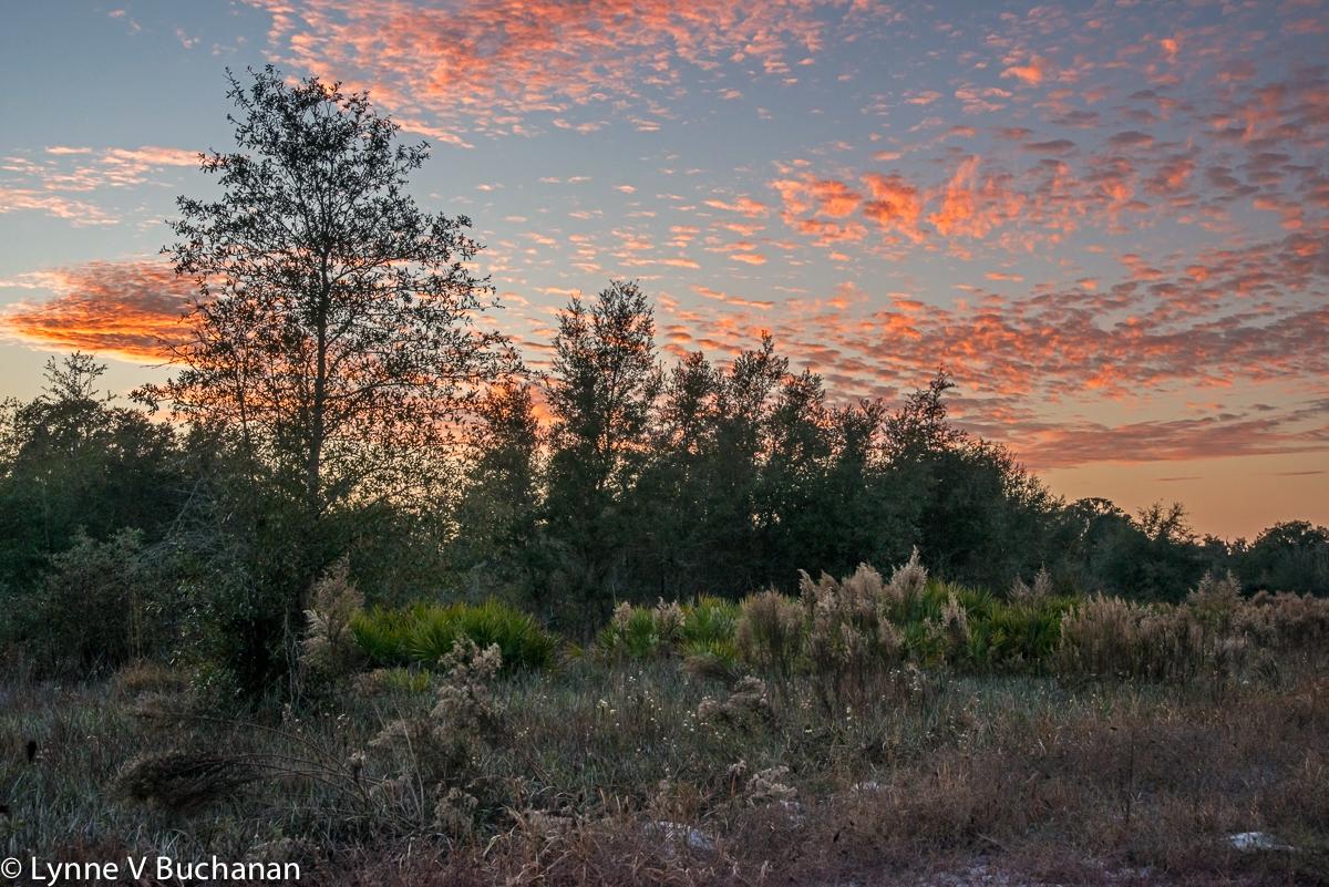 Sunset Over the Halpata Tastananki Preserve