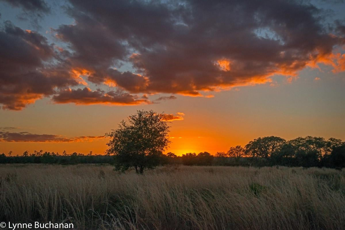Last Light, Hilochee Wildlife Management Area