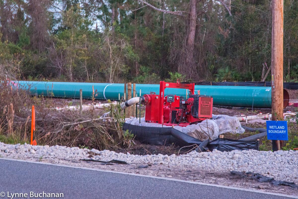 Global Pump CR474 Green Swamp