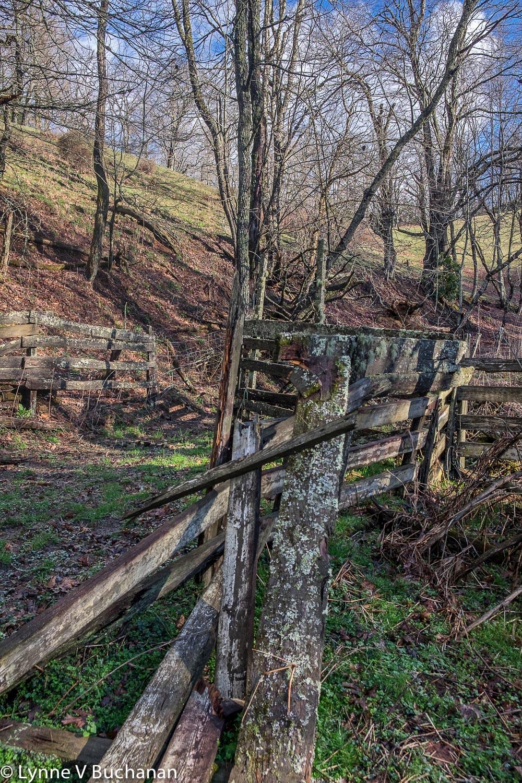 Fallen Down Fence, Moses Cone Memorial Park