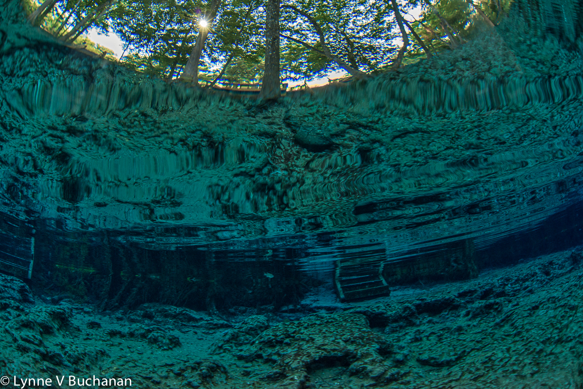 Seeing Heaven from Ginnie Springs