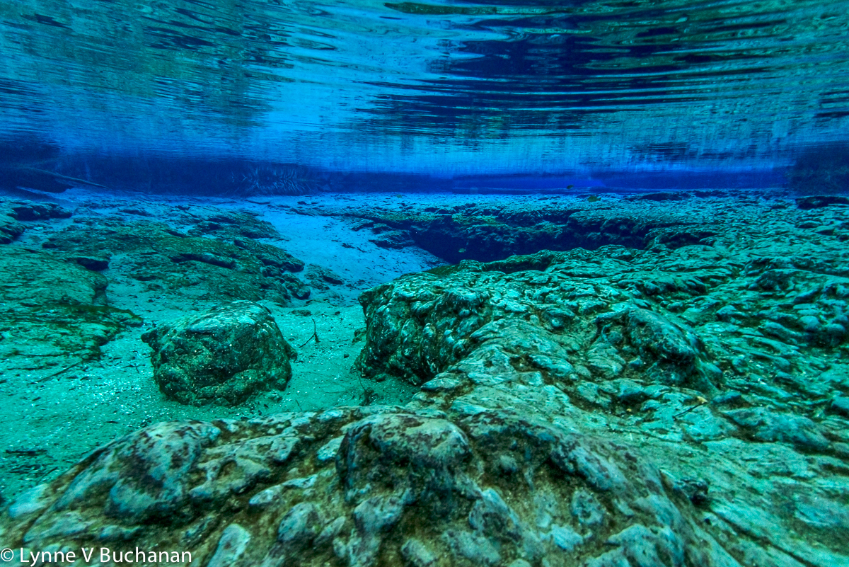 The Craggy Bottom of Ginnie Springs