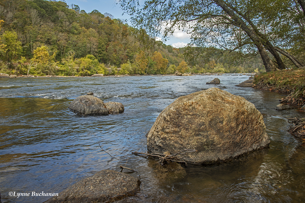French Broad River at Ledges Park
