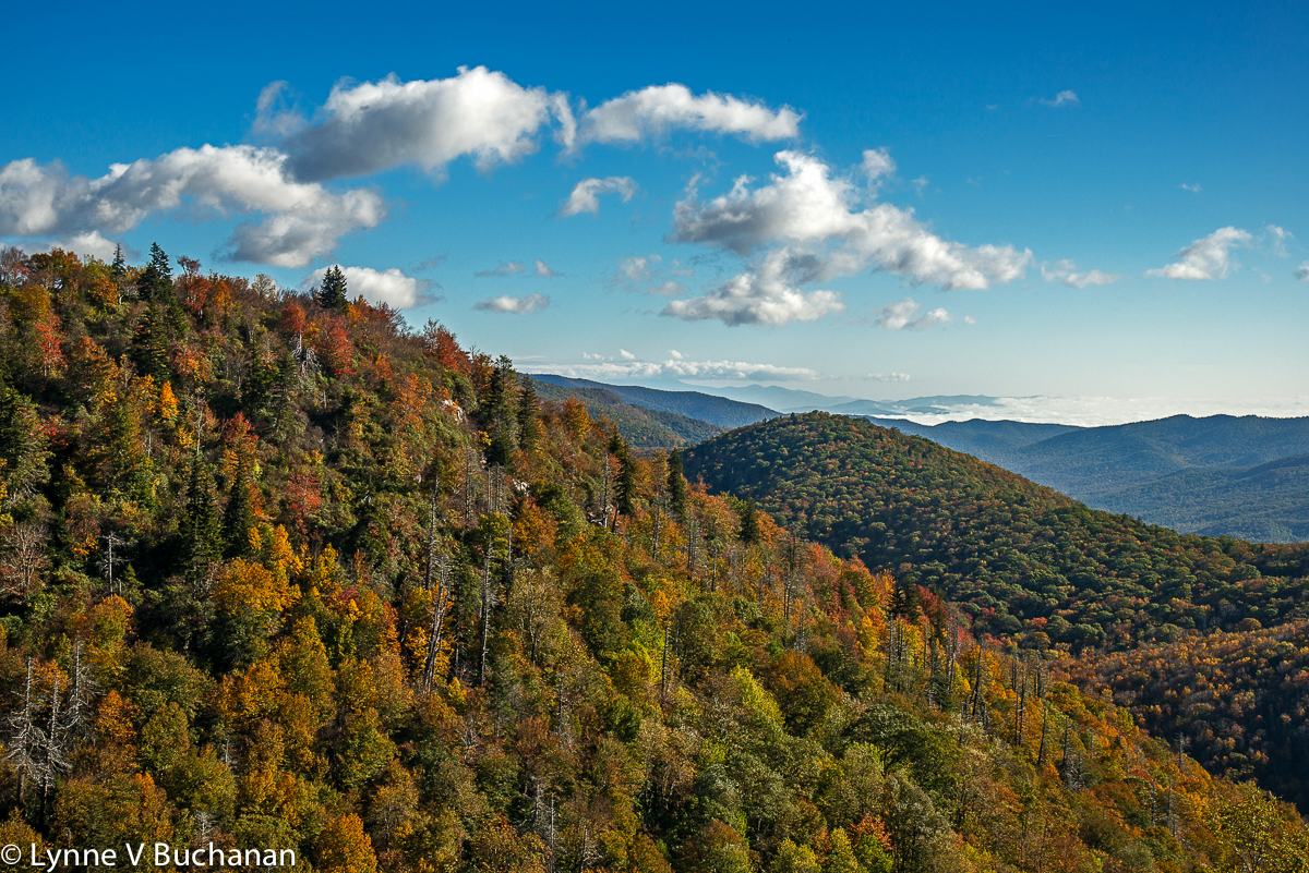 Blue Ridge Parkway Fall Color and Clouds