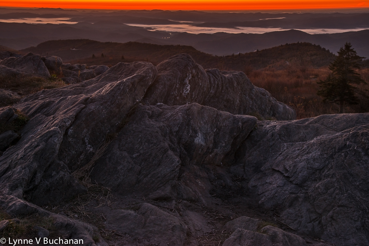 View from Black Balsam Knob Before Sunrise