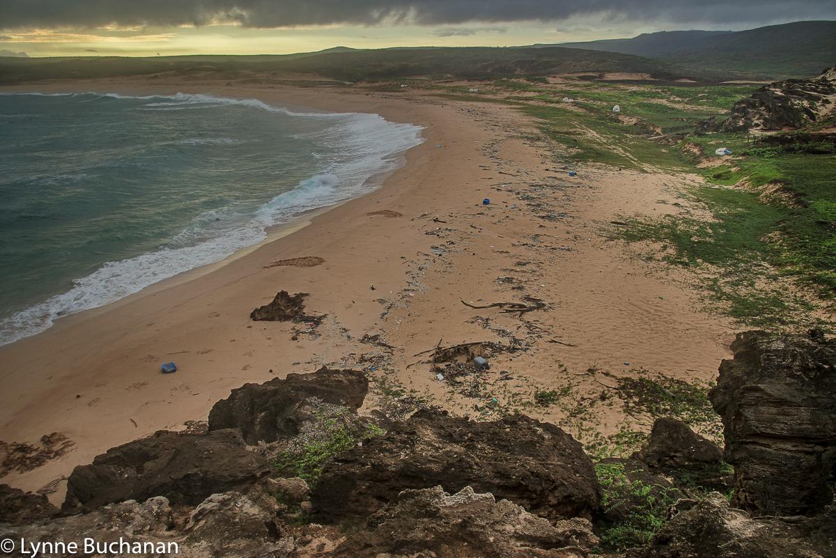 Mo'Omomi Beach with Trash