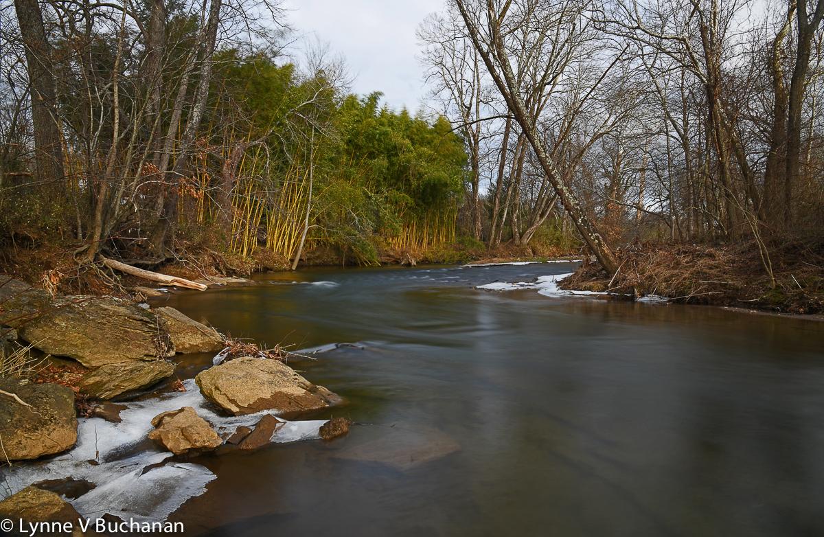 Suwannanoa River in Winter