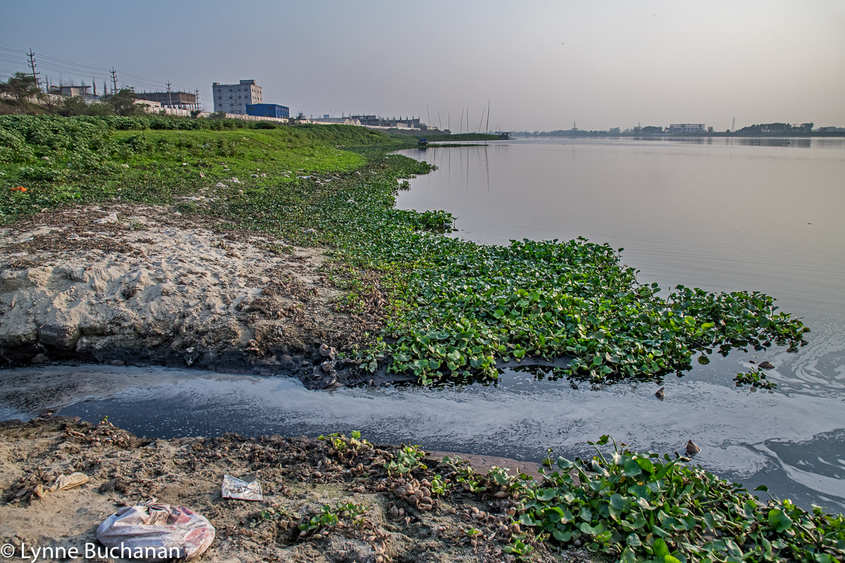 Effluent Directly Entering the Dhaleshwari River from the Savar Tannery Park
