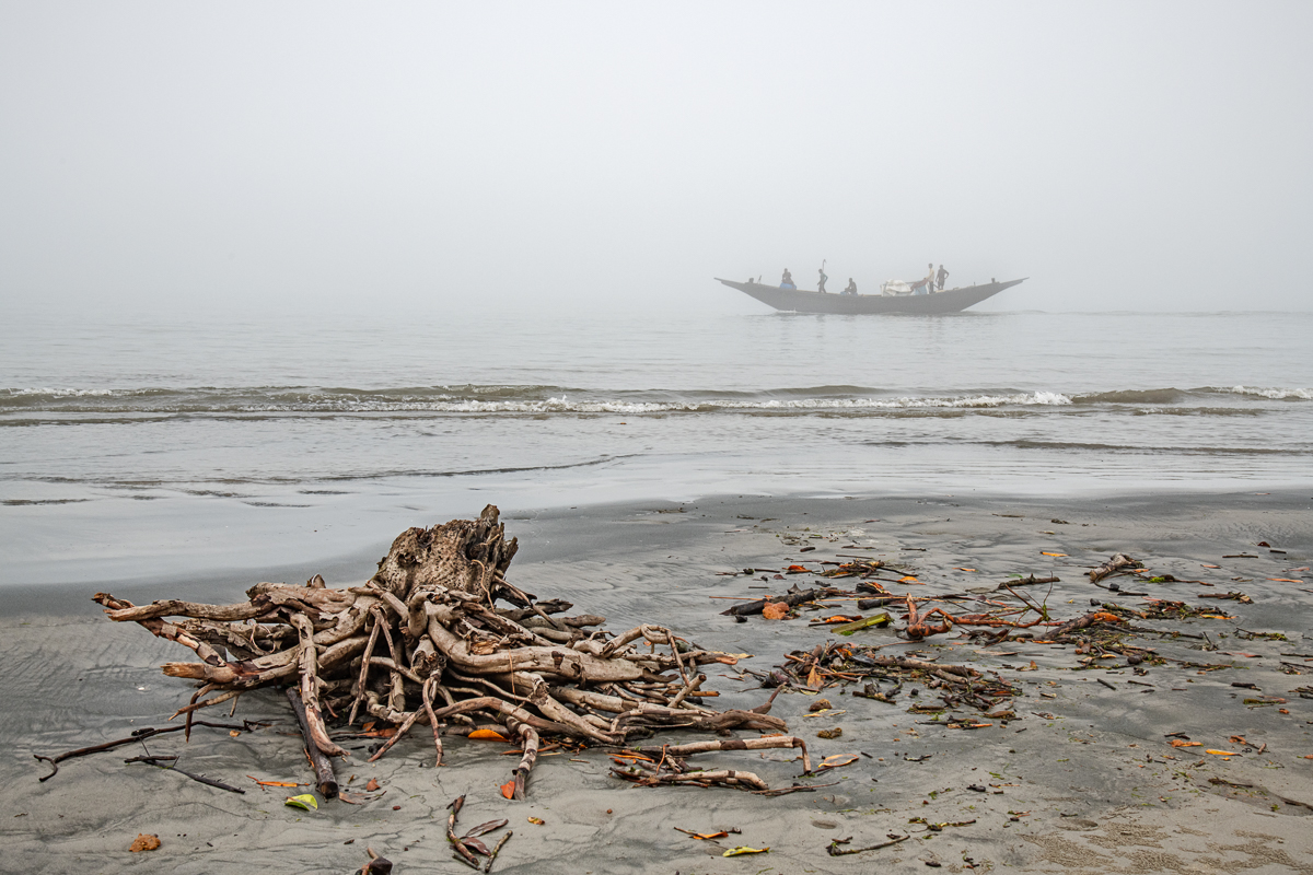 Driftwood and a Fishing Boat in the Mist, a Threatened Ecosystem and Livelihood