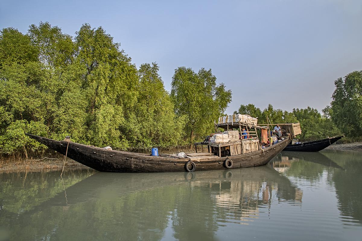 Fishing Boats, Dublar Char