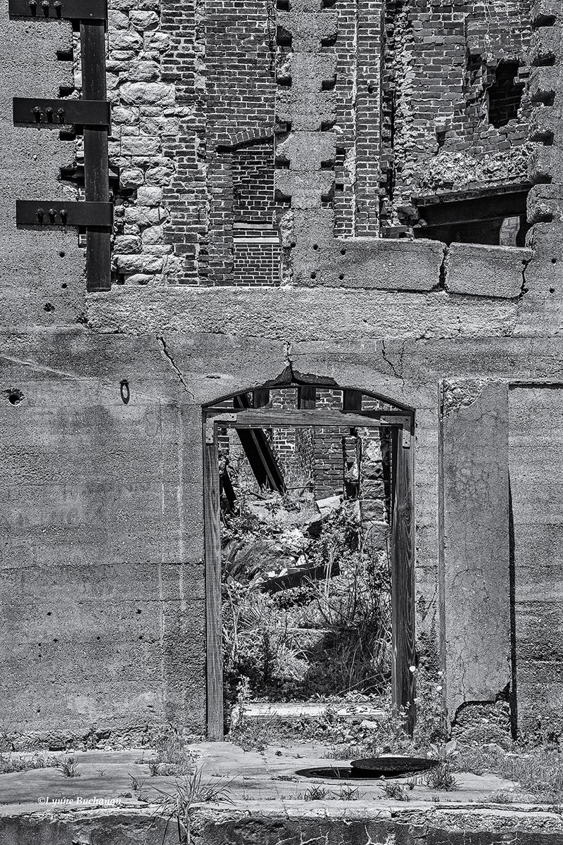 Dungeness Ruins, Cumberland Island