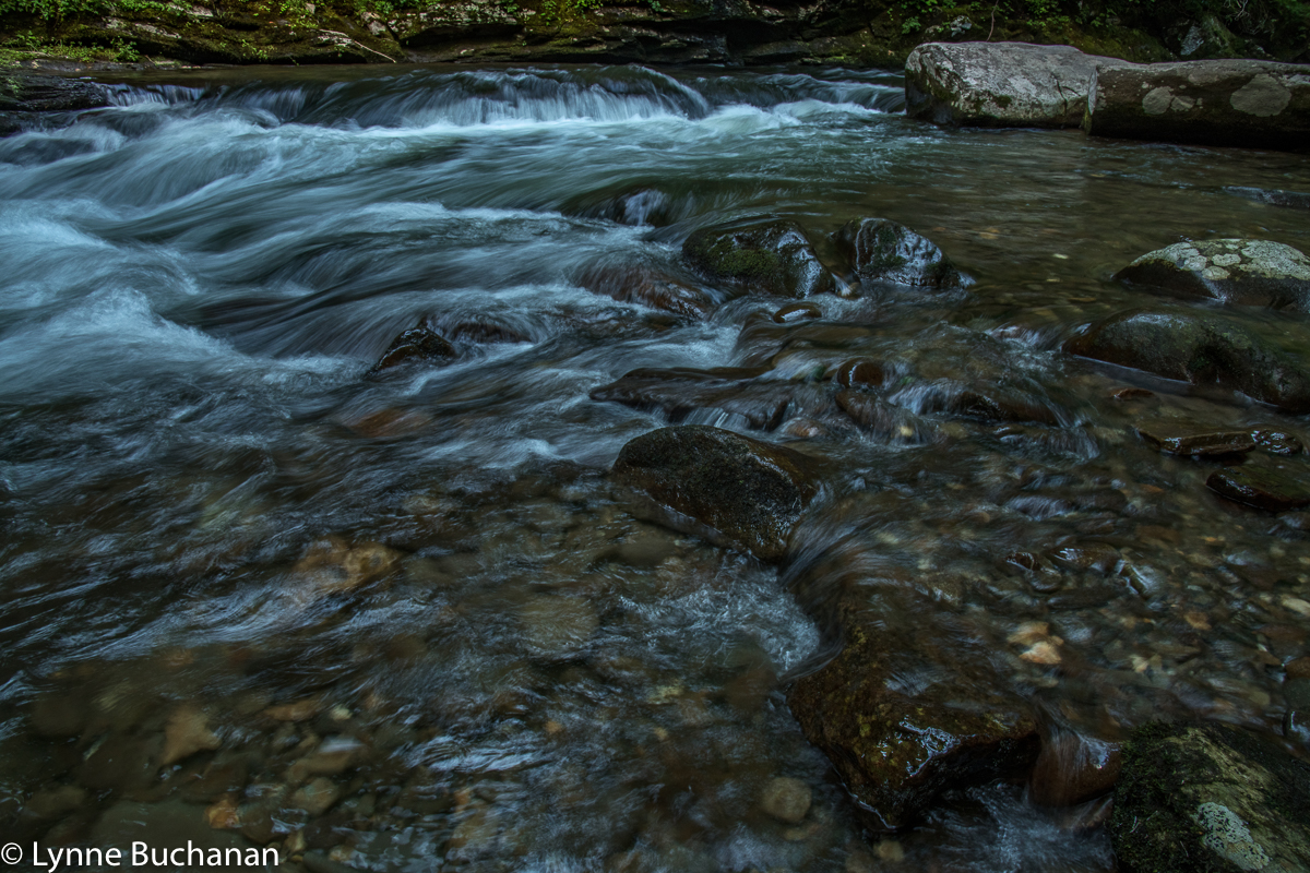 Deep Creek Riffles
