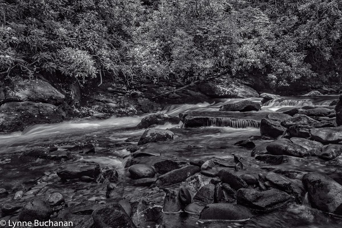 Deep Creek Ledges