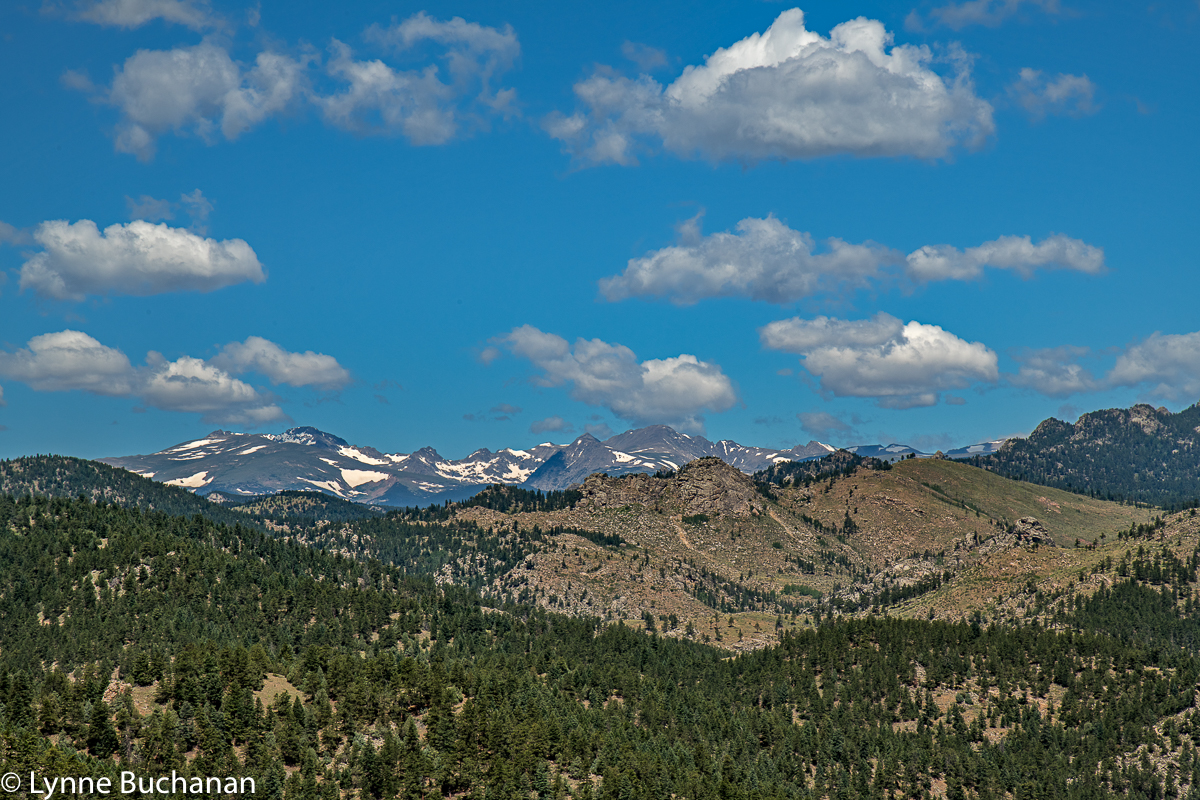 View of the Continental Divide from the Rattlesnake Gulch Trail