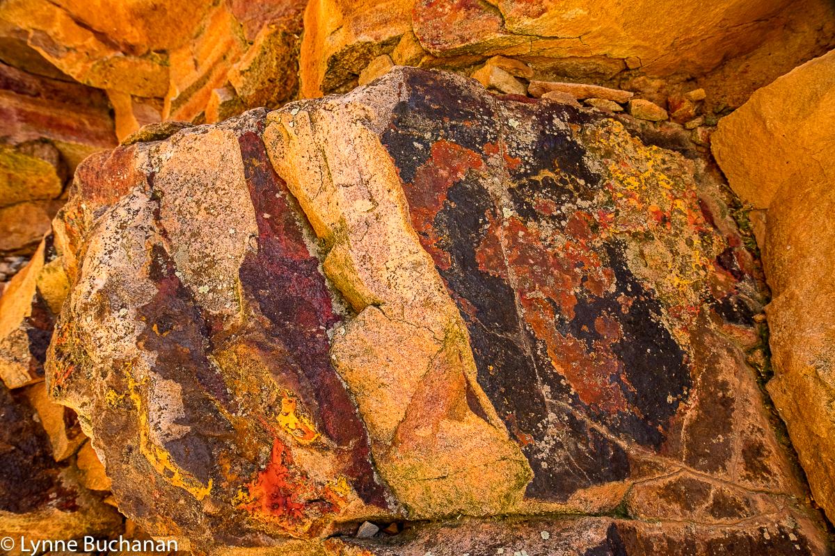 Eldorado Canyon Macro of a Rock Face