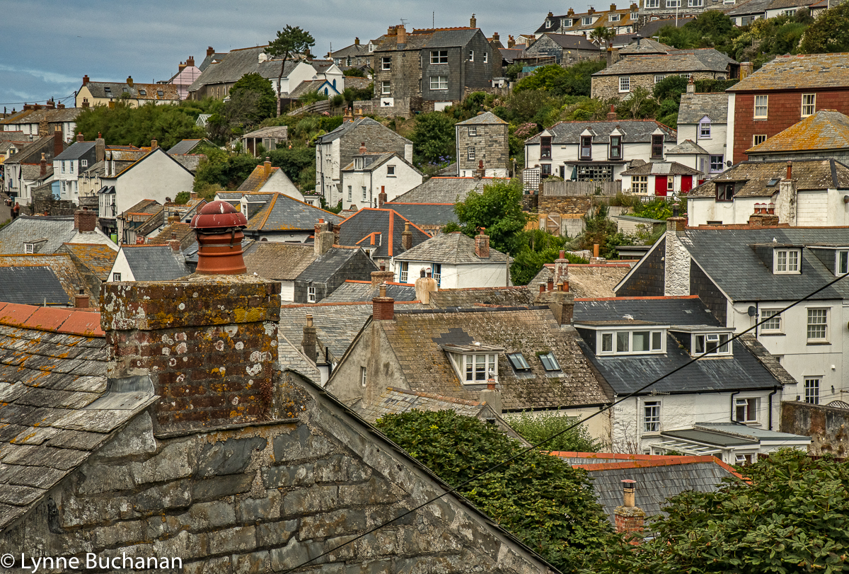 Port Isaac Rooftops from the hill