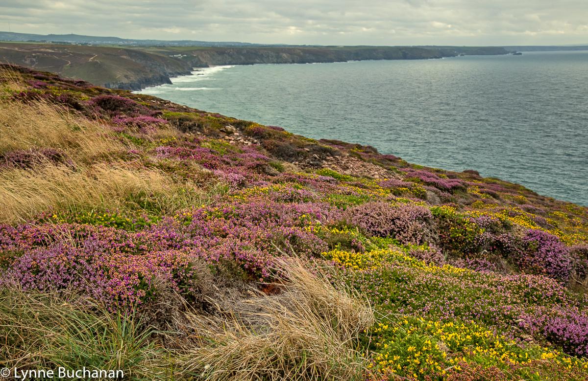 St Agnes Head Coastline