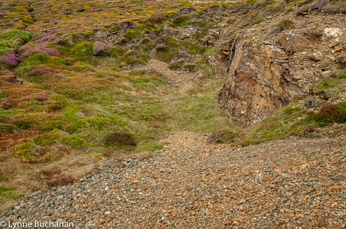 St. Agnes Head Old Quarry