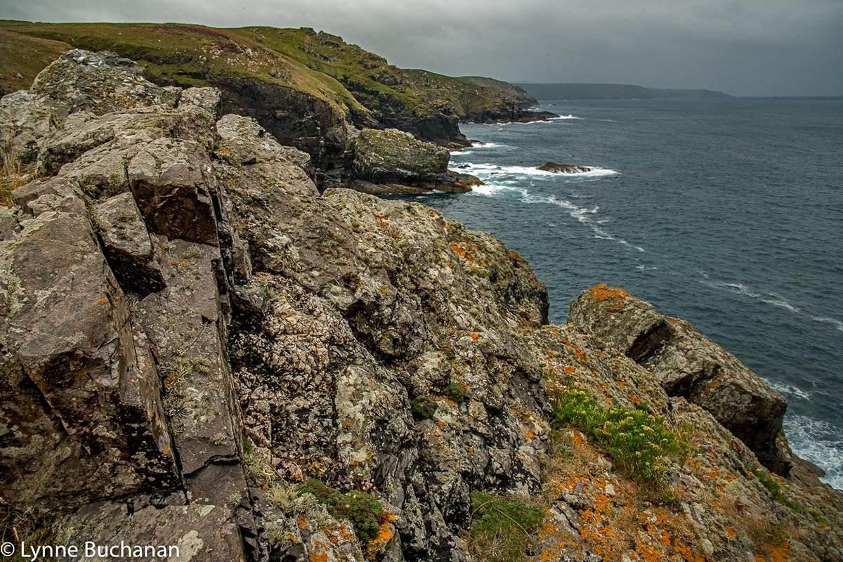 Gurnard's Head Ruins and Coastline.jpg