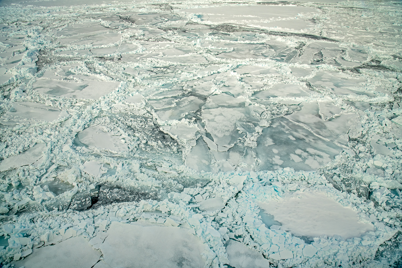 Fractured Sea Ice with Rift Lines, Weddell Sea