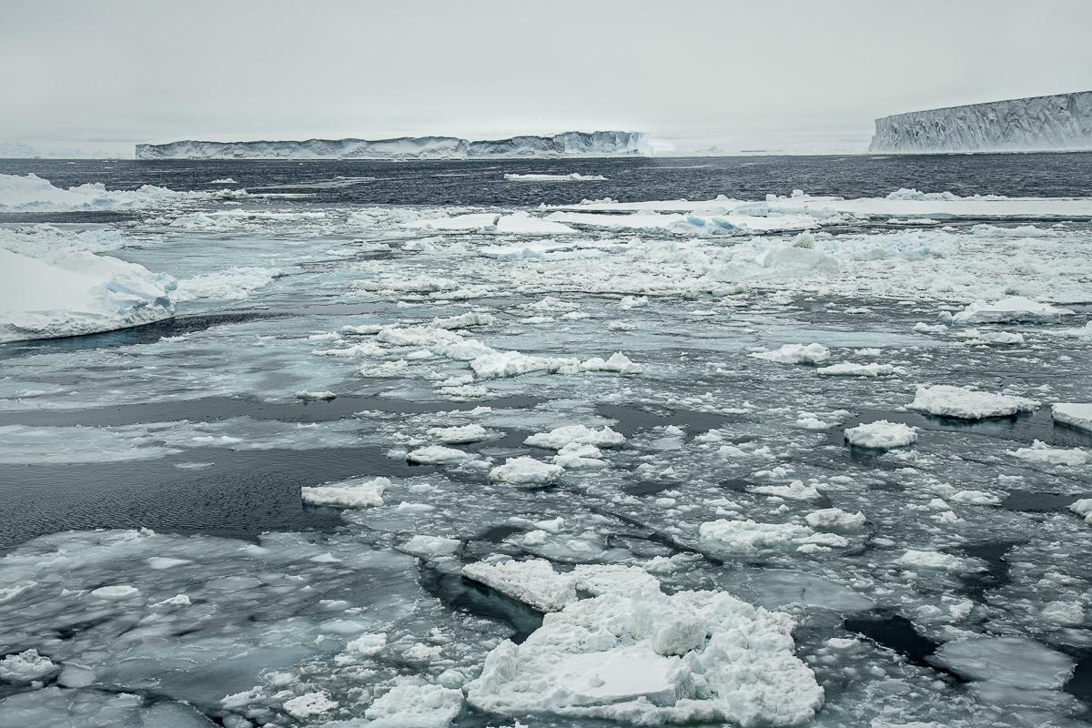 Tabular Icebergs and Melting Sea Ice