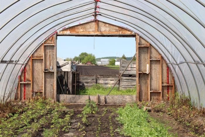 JBR Farm Visit (small).jpg