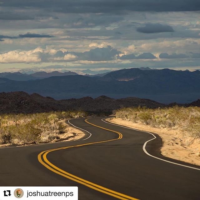 Slow down...the road is winding and there is much to see. Happy April everyone. Photo: NPS / Kurt Moses #Repost @joshuatreenps