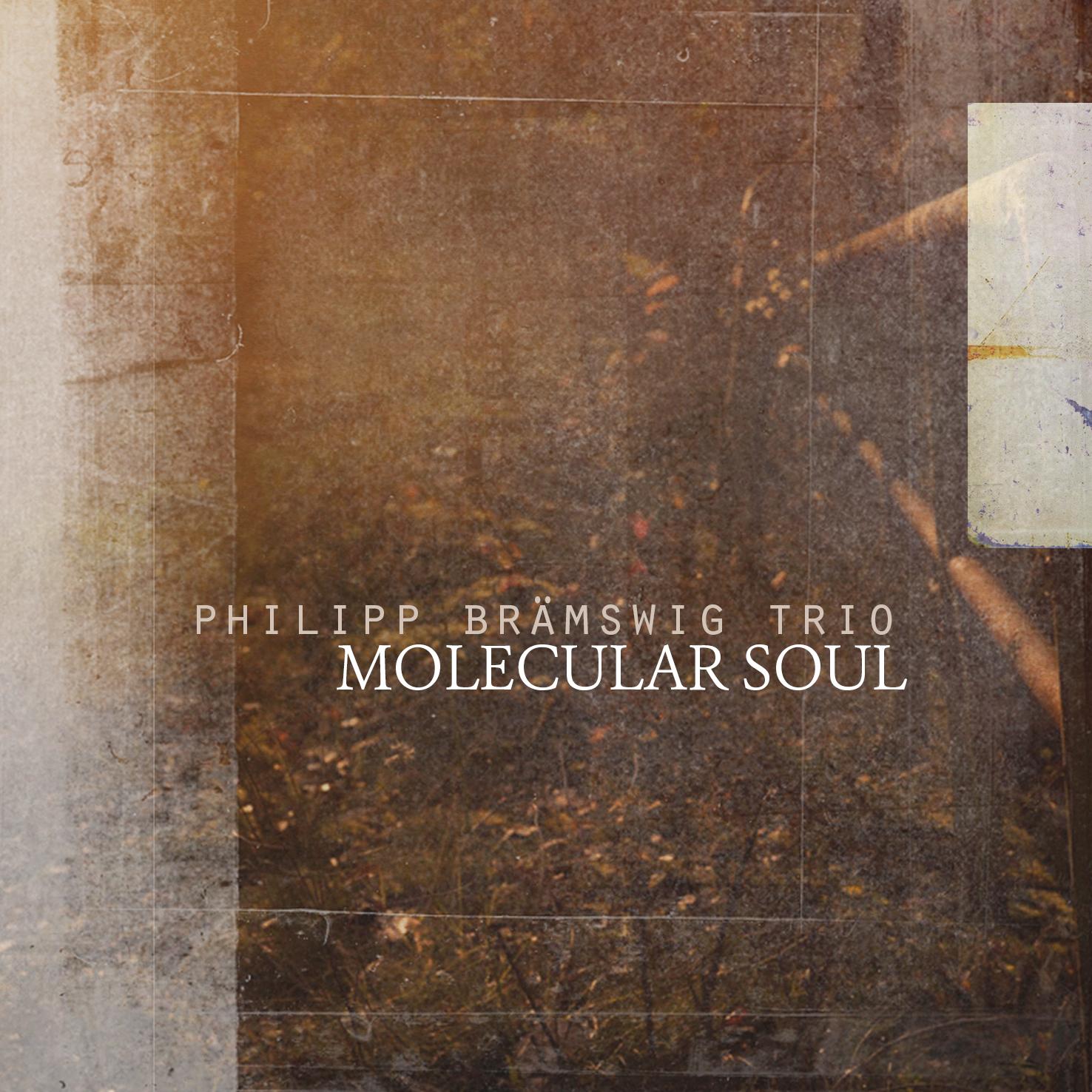 Philipp Brämswig Trio - Molecular soul