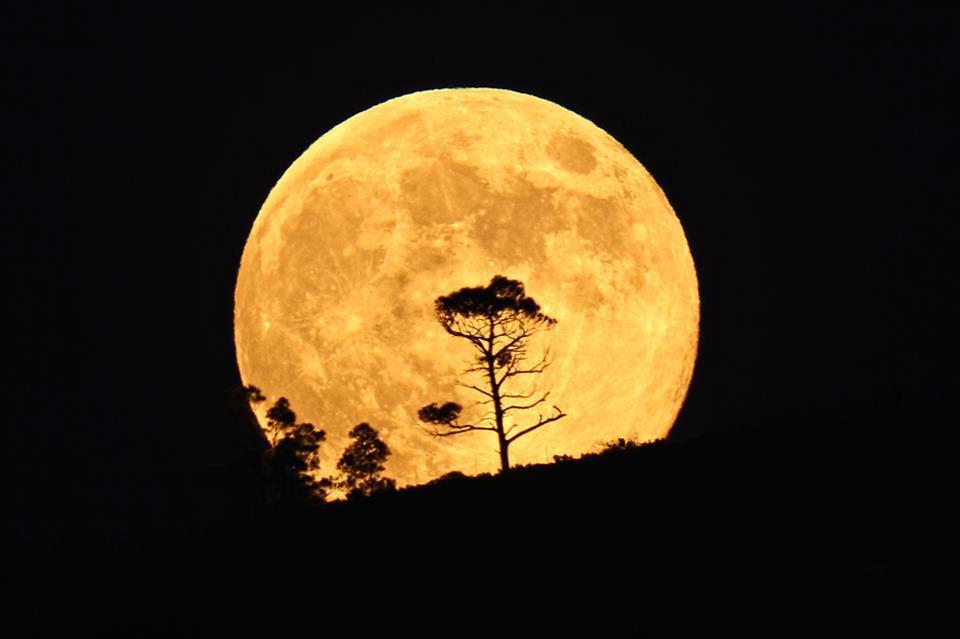 Moon Energy - Awakening to Spiritual Living — body / mind / soul