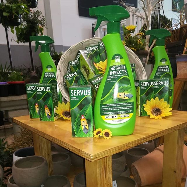 Our sale product today is none other than  SERVUS 25 EC GENERAL INSECTICIDE 100ml selling at R52 each.  This amazing product is an emulsifiable concentrate contact and stomach insecticide for the control of American bollworm, Cutworms, Spinny Bollworm, Fruit tlies, weevils, Stalk borer and Thrips just to name a few.  The active ingredient is  DELTAMETHRIN (pryrethroid) 25g/l.  Check out our next post for more on this active. . . . #theeasylife #gardeningtips #garden #insect #pyrethroids #theeasylifeofadog #flowerpower #easygreen #sale