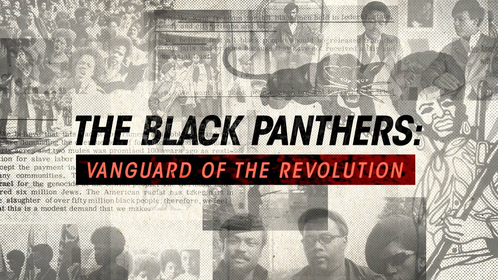the-black-panthers-vanguard-of-the-revolution.jpg