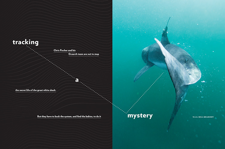 """""""TRACKING A MYSTERY"""" FEATURE FOR AMERICAN WAY MAGAZINE, AUGUST 2018 