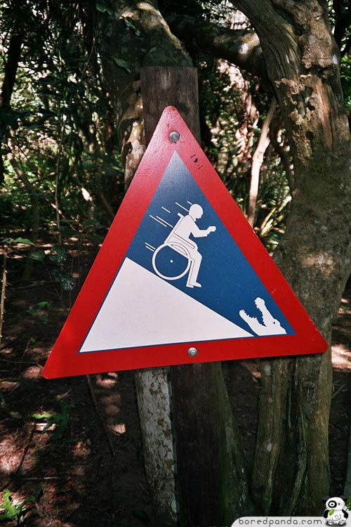Wheelchair Alligator