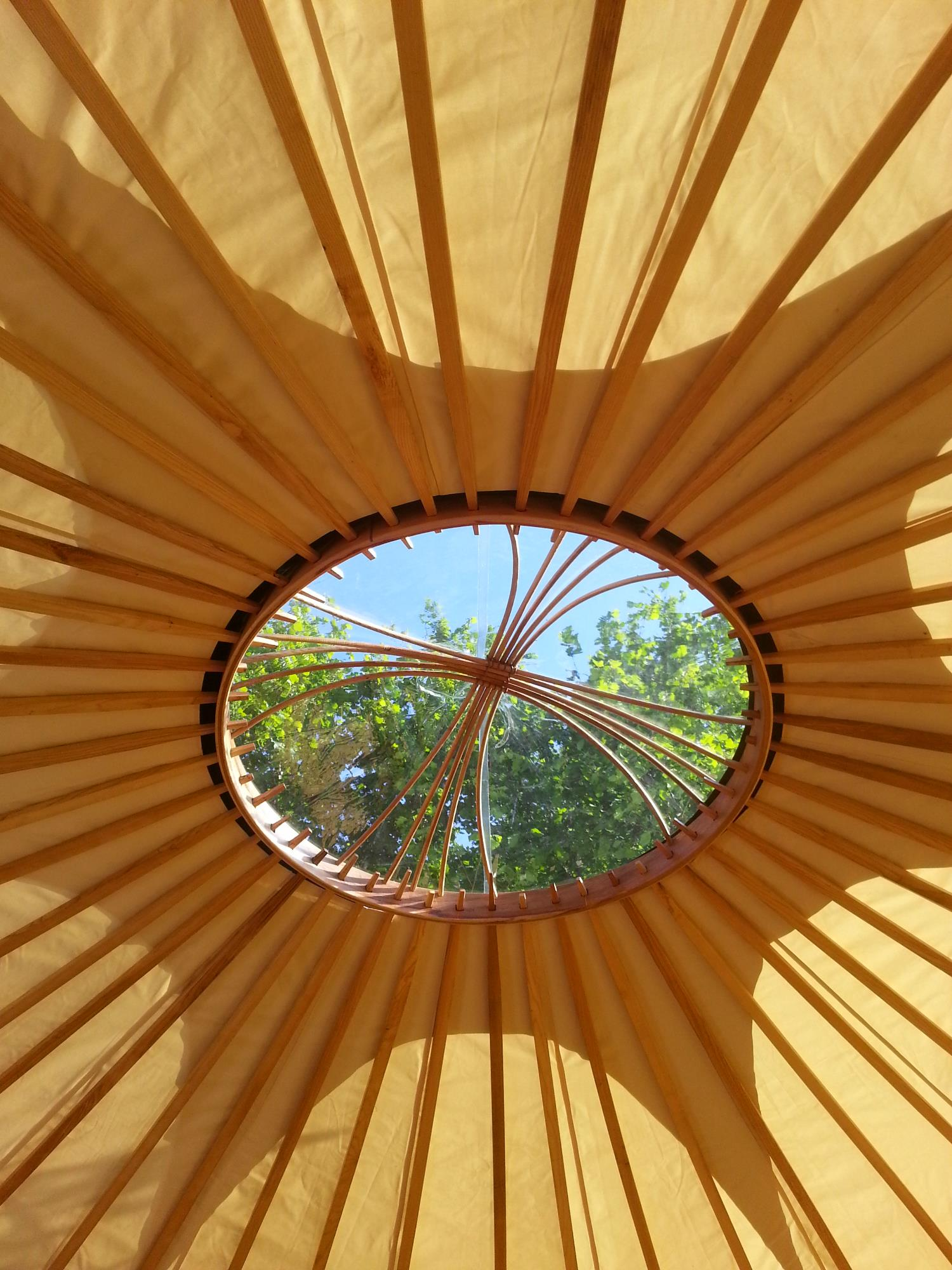 A view of the sunny day through the clear skylight in the yurt roof