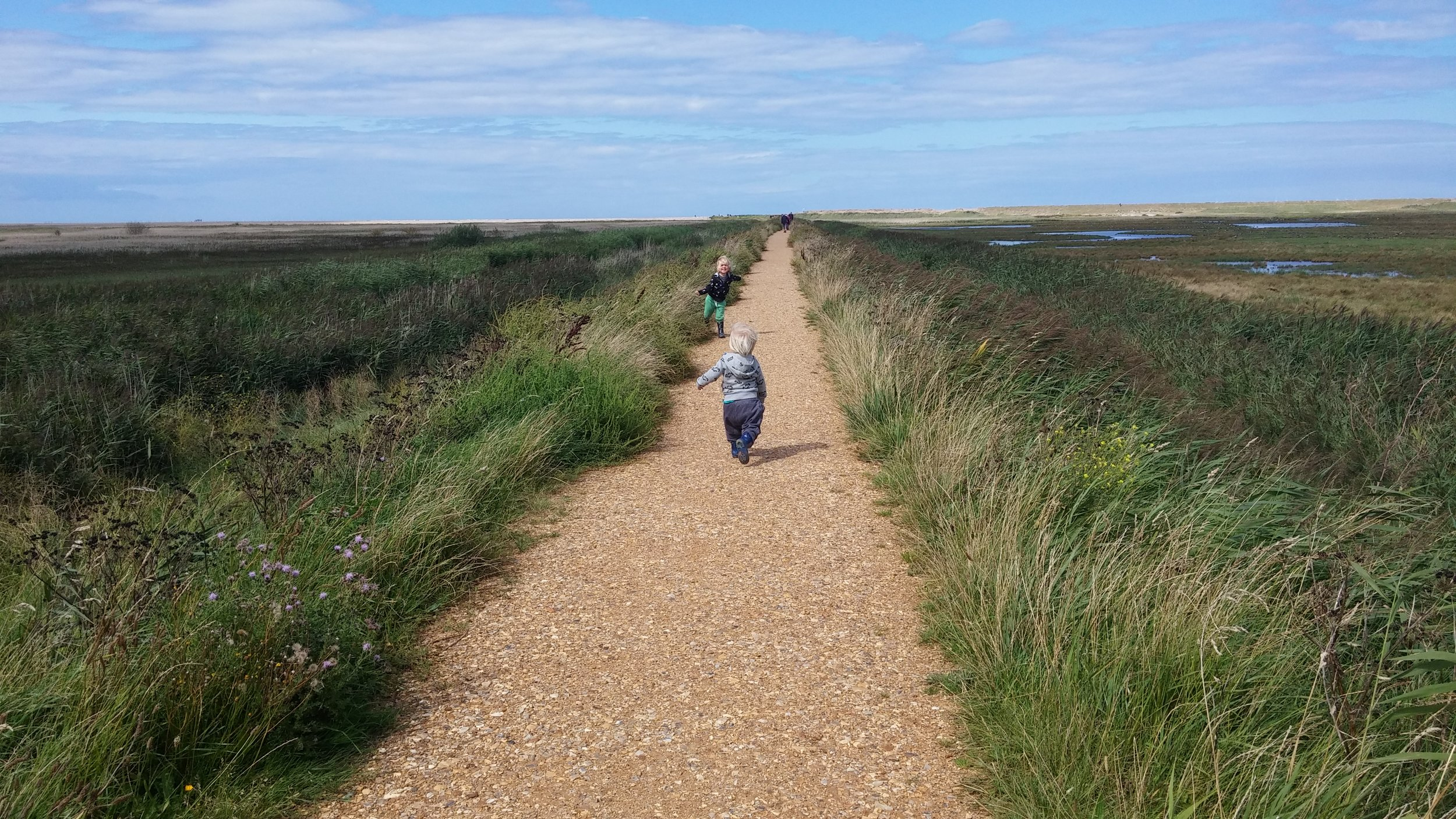 Marshes pathway