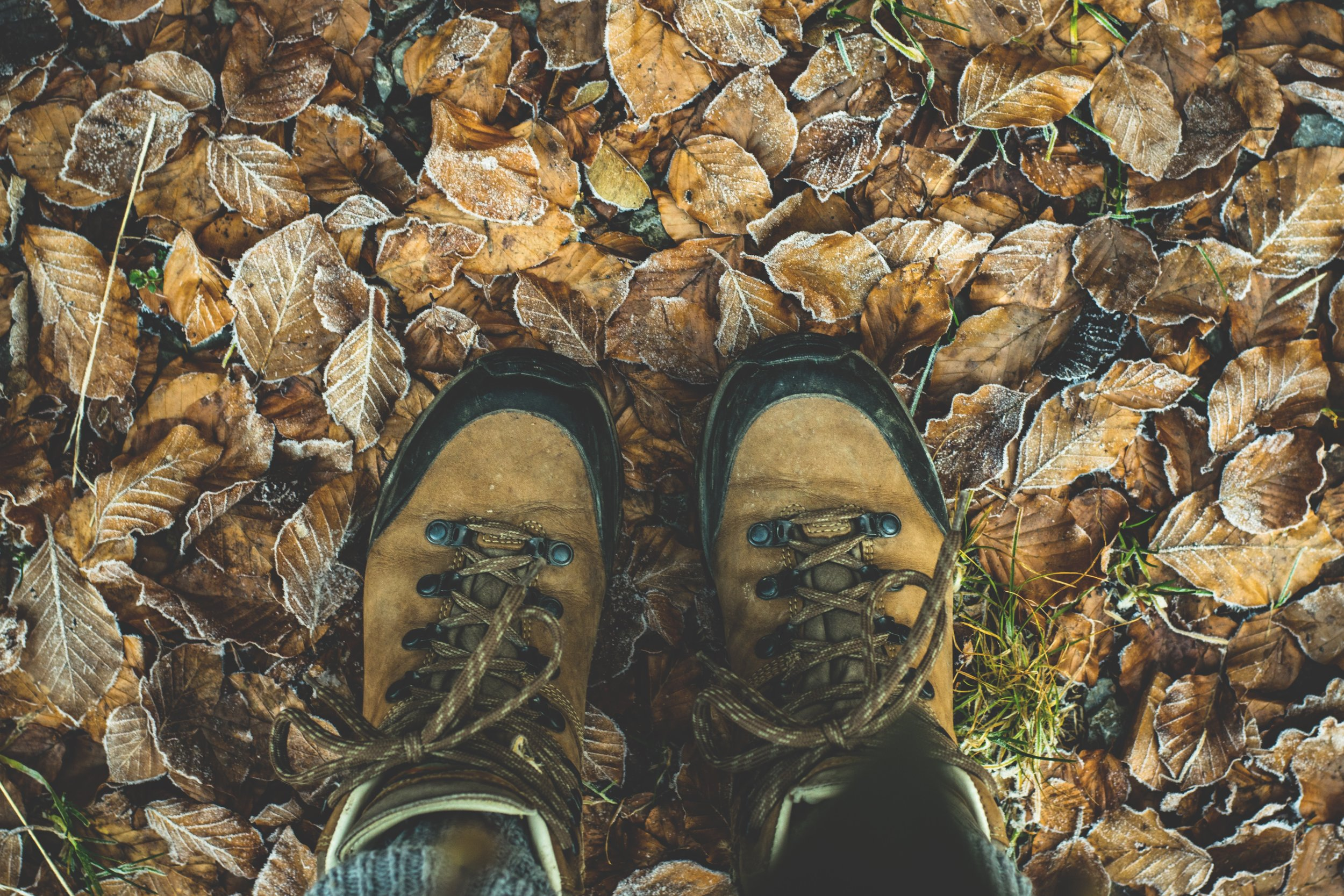 Enjoy walks Norfolk has to offer, bring your hiking boots