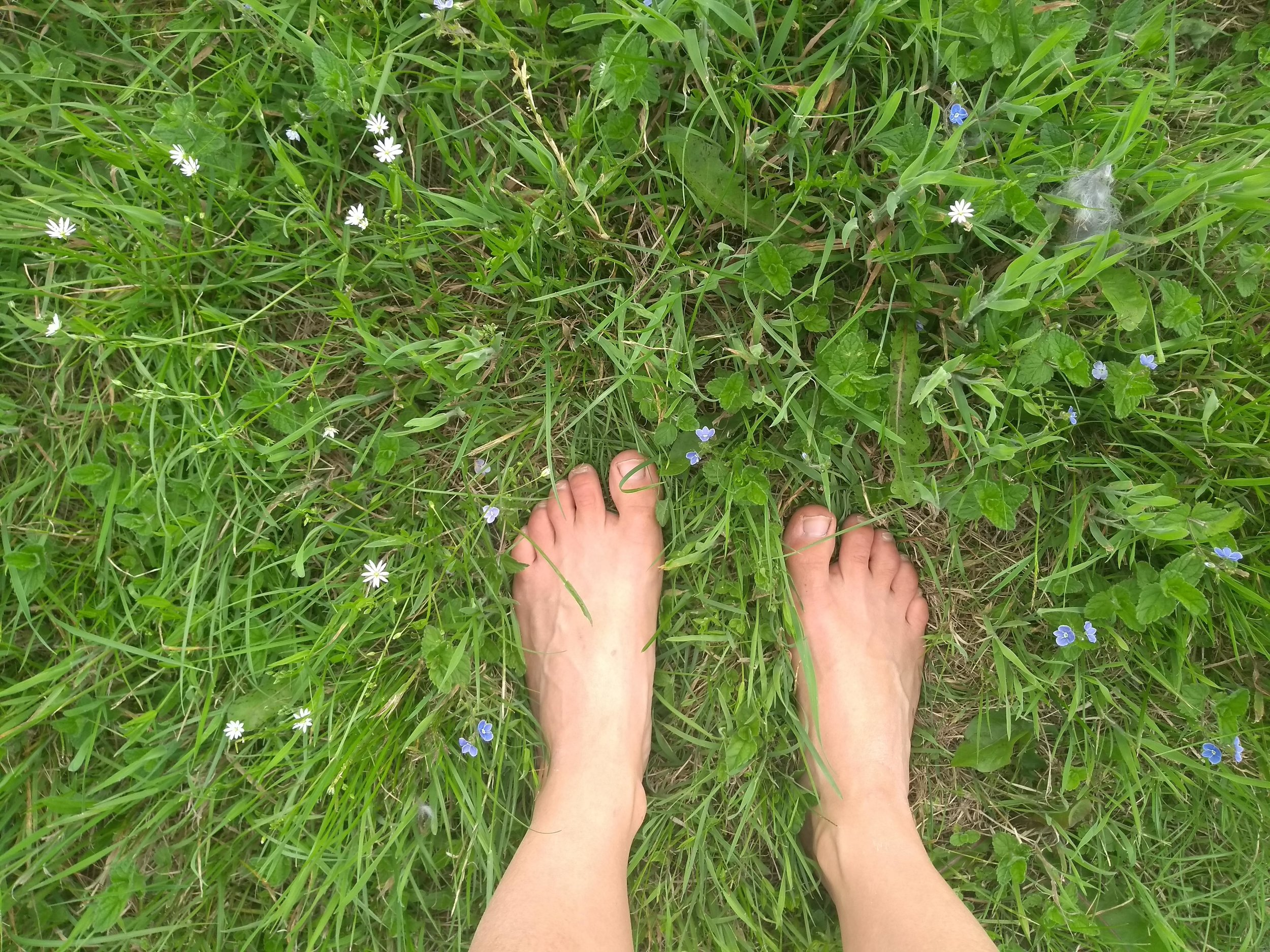 Barefoot in the meadow