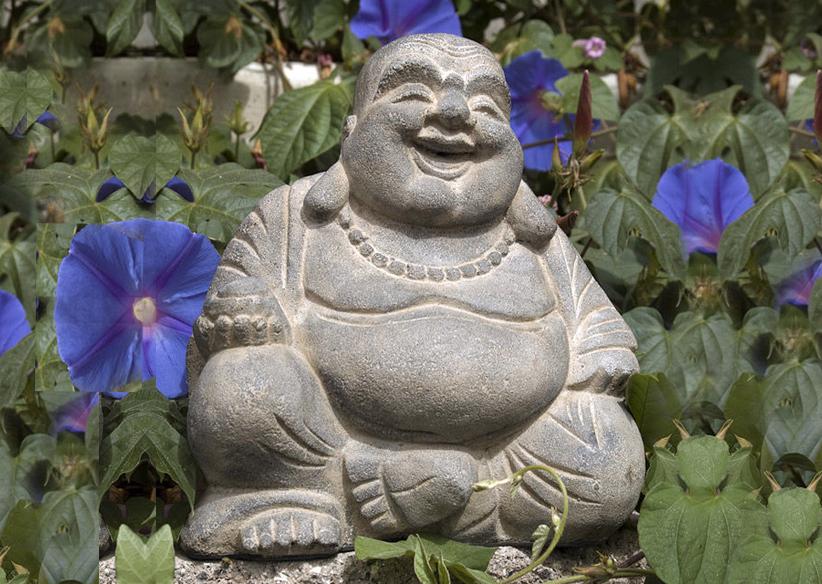 Habits of Happiness Buddah