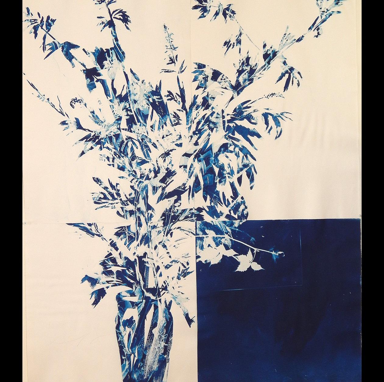 Centerpiece, 2012, cyanotype