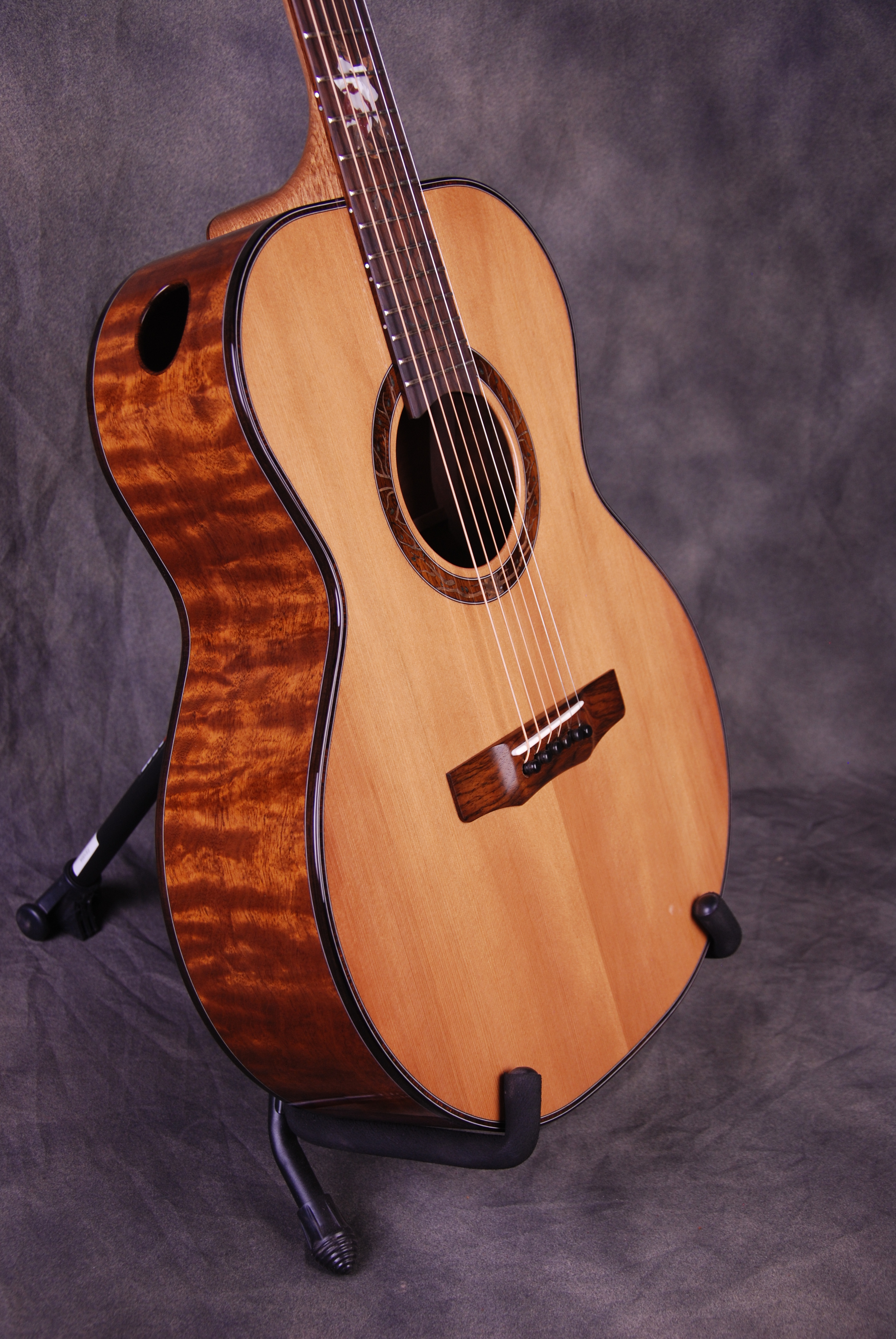 "S/N 398 Limited ""The Everbloom"" - ""The Tree"" Mahogany Back/Sides, Sinker Redwood Top"