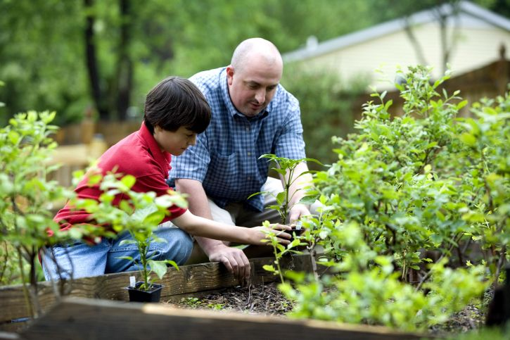 father-and-his-son-outdoor-activity-home-grown-foods-725x483.jpg