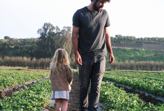 Frecker Farms -