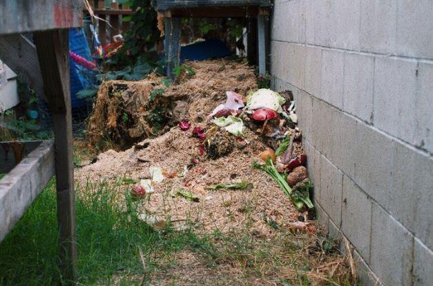 Food Waste -
