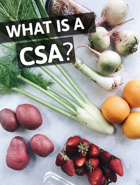 What is a CSA? - 10/16/18