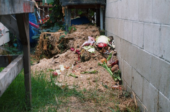 Food Waste - 10/30/18