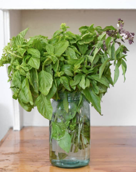How to store basil! - The best way to store basil is to put it in a glass of water and leave on your counter. It smells amaze and it'll last at least a week!